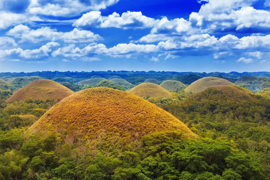 Filipiny - Czekoladowe Wzgórza