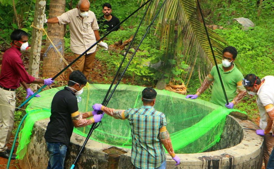 Groźny wirus Nipah przenoszony przez nietoperze zaatakował w Indiach