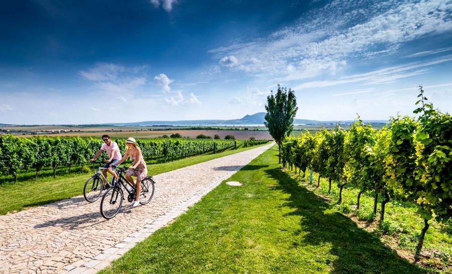 rowery Morawy Południowe. fot. Petr Slavík