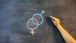 symbole płci na szkolnej tablocy