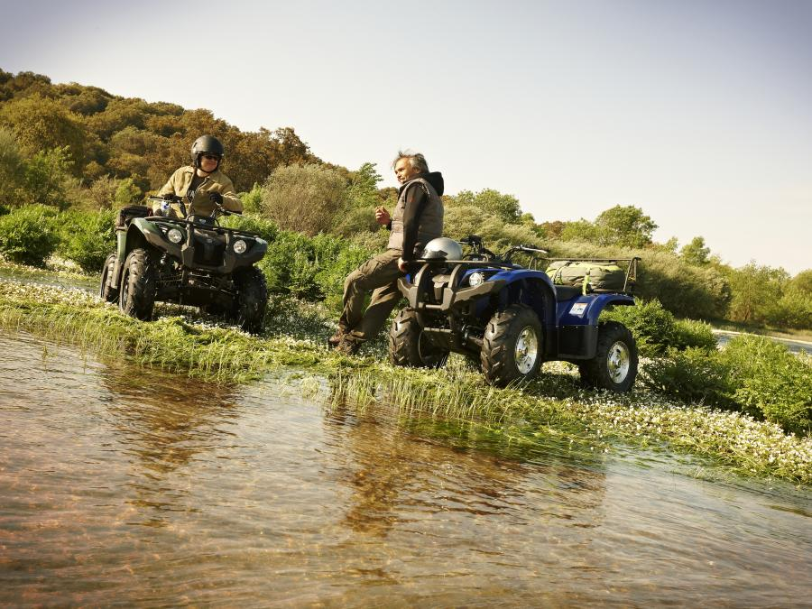 YAMAHA GRIZZLY 450 EPS