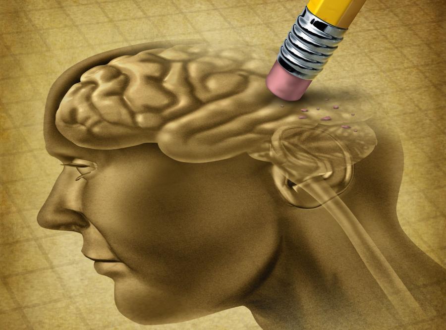 W młodym wieku łatwiej się uczymy, ale nasz mózg jest podatniejszy na zniszczenie przez stres