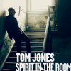 "7. Tom Jones – ""Spirit In The Room"""