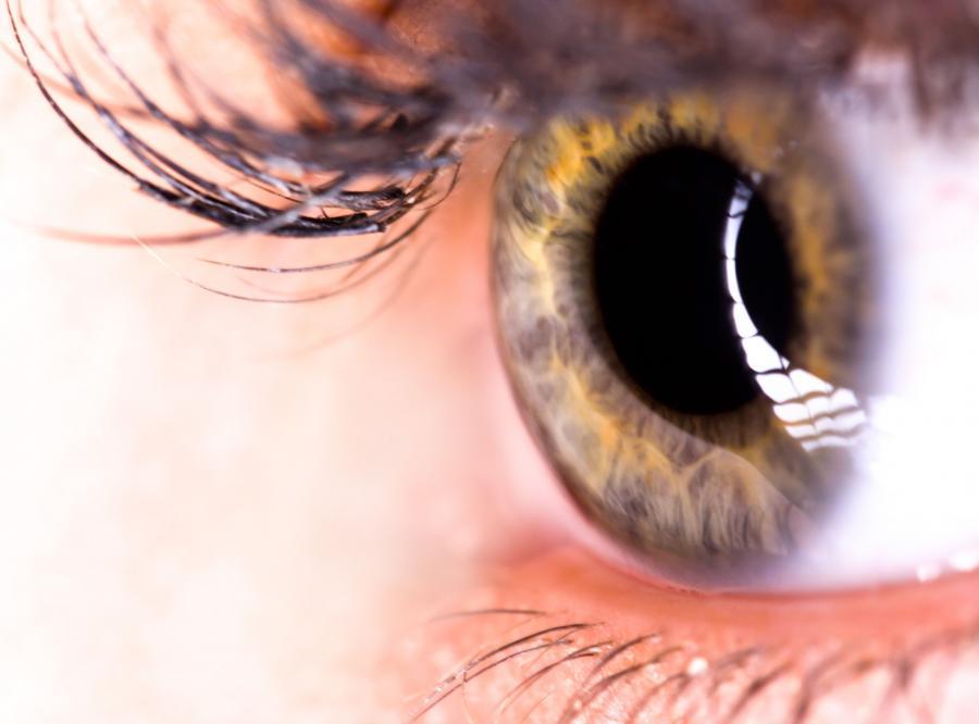 Bioniczne oko umożliwi niewidomym widzenie