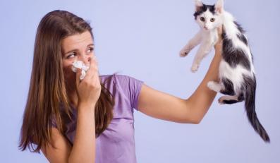 Aż 40 procent Polaków ma predyspozycje do alergii