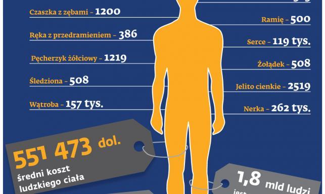 Znalezione obrazy dla zapytania: Handel organami ludzkimi