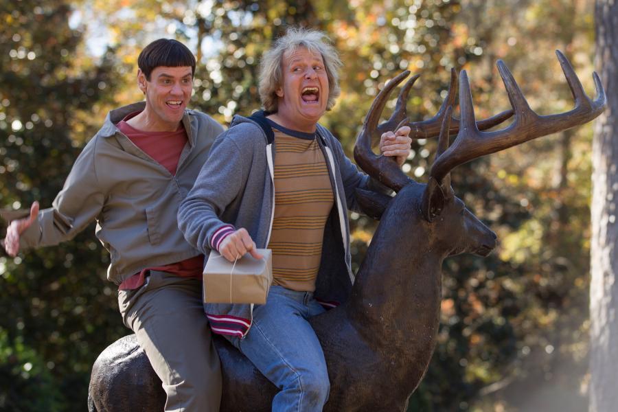 Jim Carrey i Jeff Daniels w filmie \