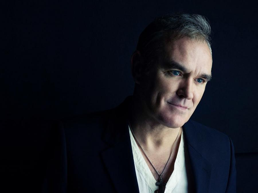 Morrissey – pies, czyli kot