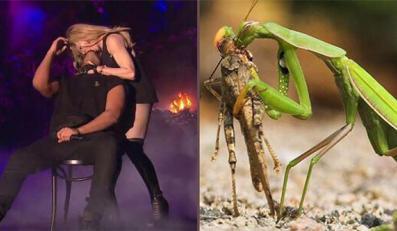 Filmik pokazujący nieoczekiwany pocałunek, jakim Madonna uraczyła Drake'a na festiwalu Coachella i reakcję rapera niemalże od razu stał się hitem sieci