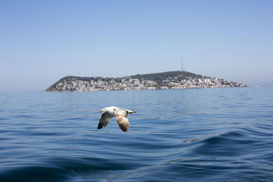 Wyspy Książęce, Turcja
