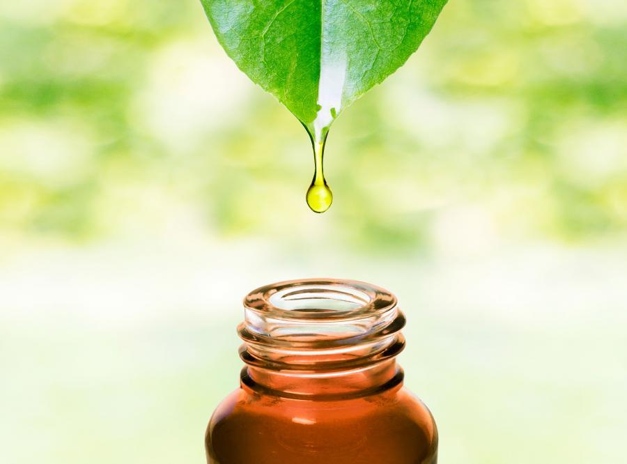 1. Olejek z drzewa herbacianego