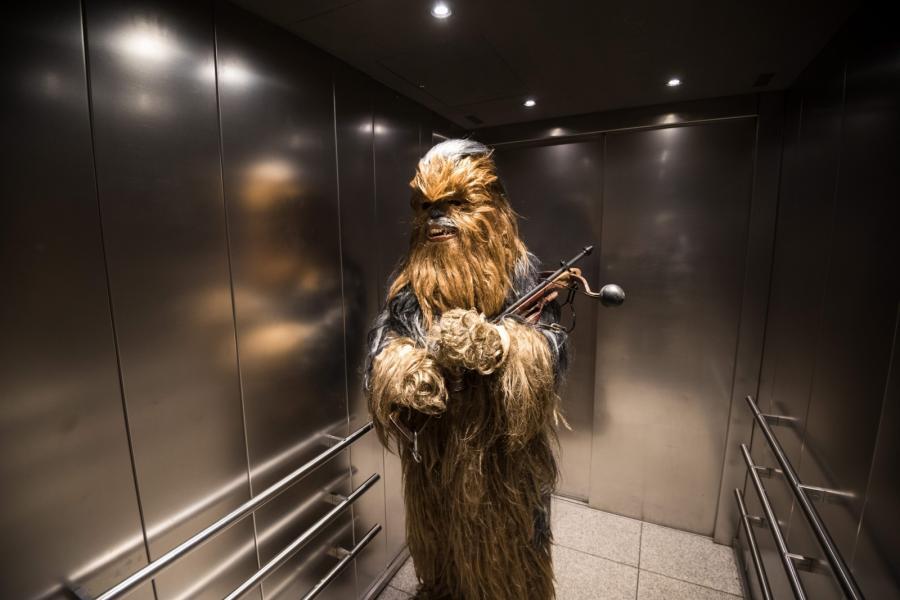 Niemiecki fan całkiem jak Chewbacca
