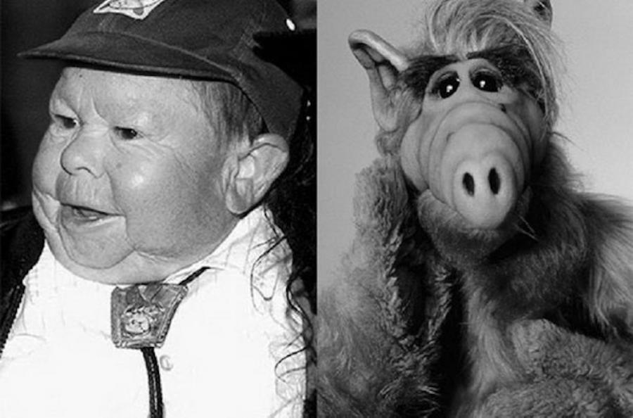 Zmarł Michu Meszaros, czyli telewizyjny Alf